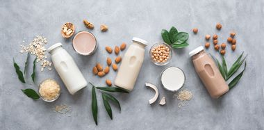 Vegan Products - A Spotlight on Beauty's Hot New Trend