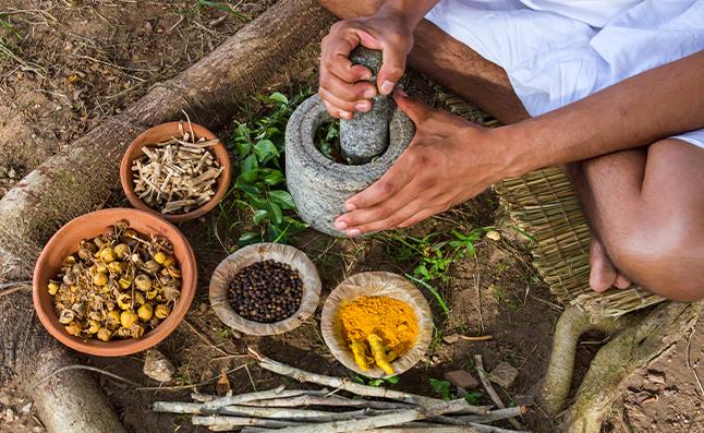 ayurvedic herbs for hair